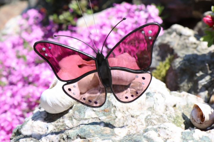 butterfly - historical glass
