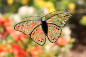butterfly for - historical glass