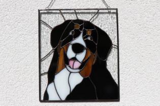 Bernese Mountain Dog - historical glass